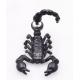 Серьга-фейк Скорпион цвет черный, шт.